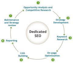 hire dedicated seo expert