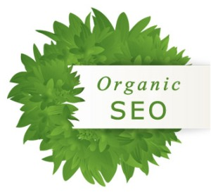 Hire Professional SEO Expert to Create a Strong Online Presence