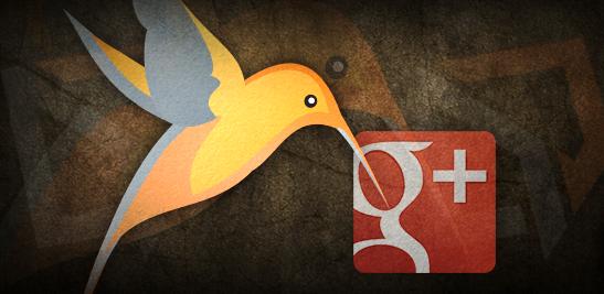 Google Hummingbird ~ Alok Raghuwanshi